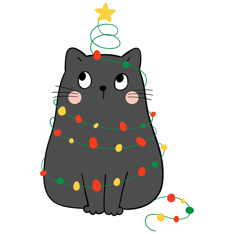 Kitty 5