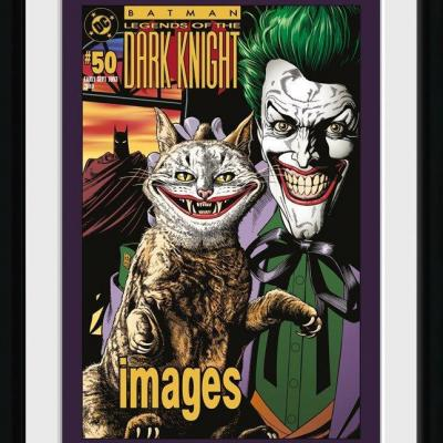 Batman comic collector print 30x40 joker cat