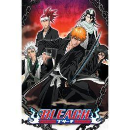 Bleach poster 61x91 chained