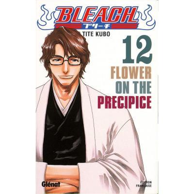 Bleach tome 12