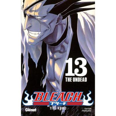 Bleach tome 13