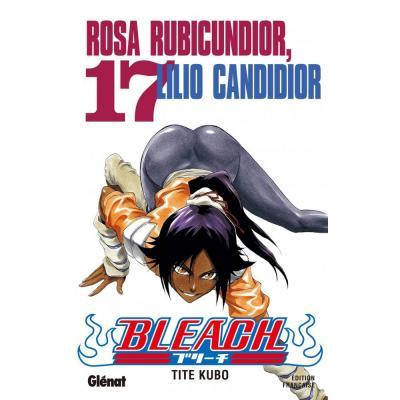 Bleach tome 17