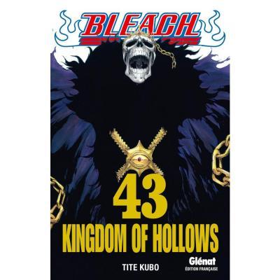 Bleach tome 43