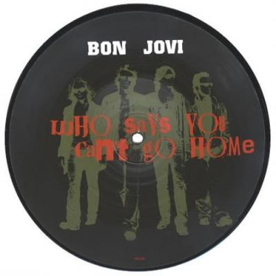 Bon jovi 45t who s says you can t go homme picture disc