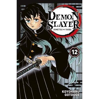 Demon slayer tome 12