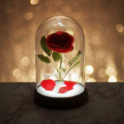 Disney lampe rose enchantee