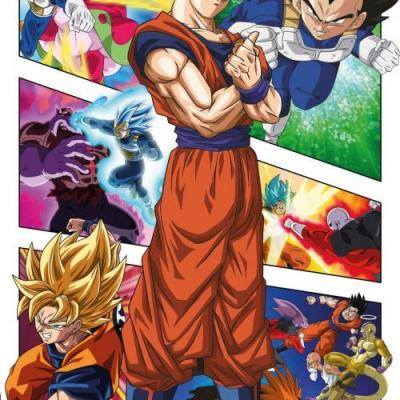 Dragon ball super panels poster 61x91 5cm