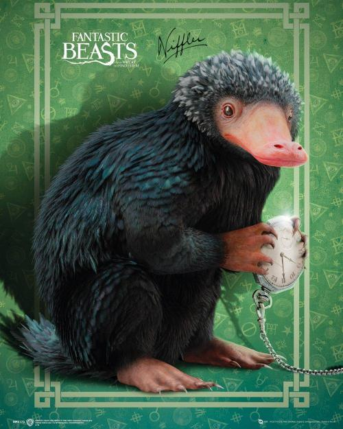 Fantastic beasts mini poster 40x50 niffler