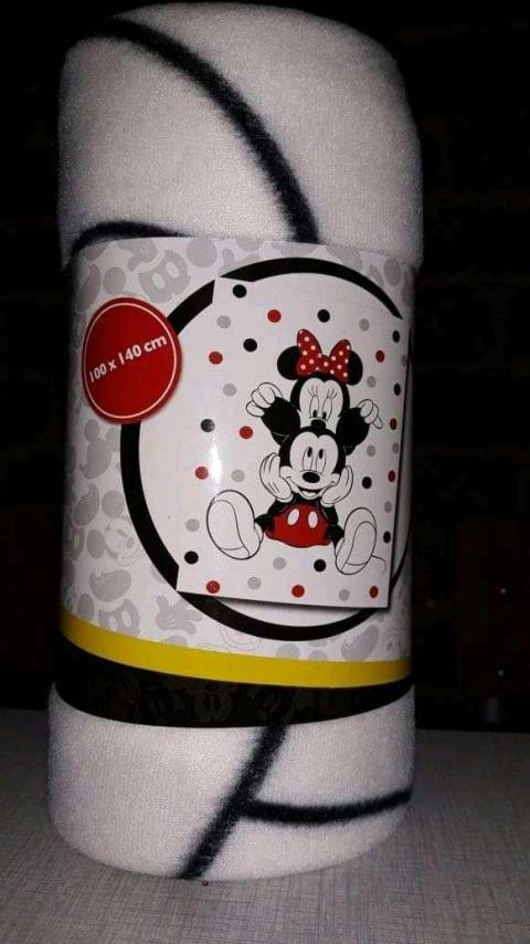 Plaid Mickey & Minnie