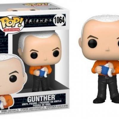 Friends bobble head pop n 1064 gunther