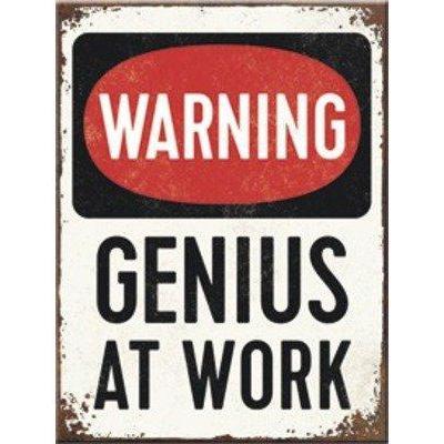Genius at work magnet 6x8cm
