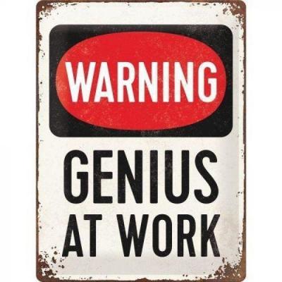 Genius at work plaque metal 30x40cm