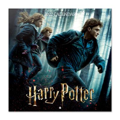 Harry potter calendrier 2022 30x30cm