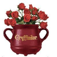 Harry potter chaudron gryffondor pot de fleur mural 1
