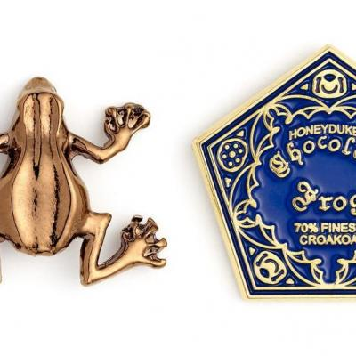 Harry potter chocolate frog pin s