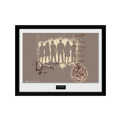 Harry potter collector print 30x40 dumbledores army