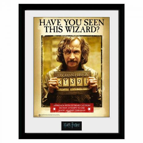 Harry potter collector print 30x40 sirius azkaban