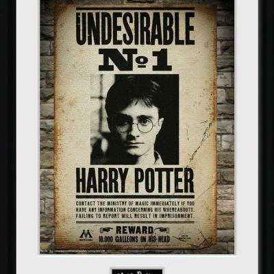 Harry potter collector print 30x40 undesirable no1
