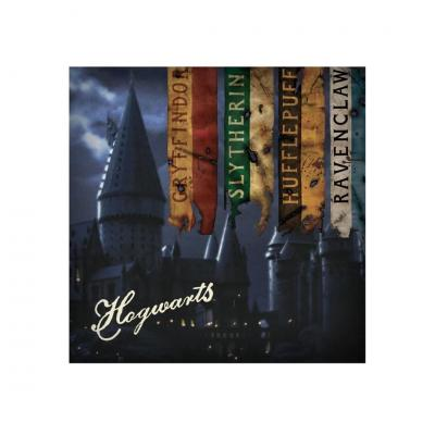 Harry potter coussin hogwarts 40x40cm with secret pocket
