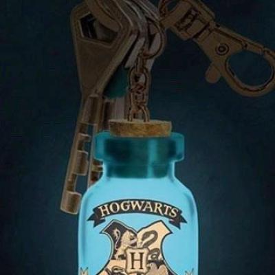 Harry potter harry potter light up keyring v2 2