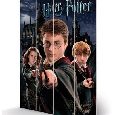Harry potter harry ron hermione impression sur bois 40x59cm