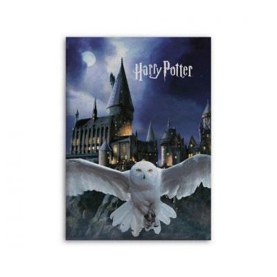 Harry potter hedwige plaid polaire 100 microfibre 70x140cm