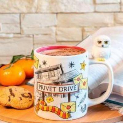 Harry potter hedwige privet drive mug 3d 460ml