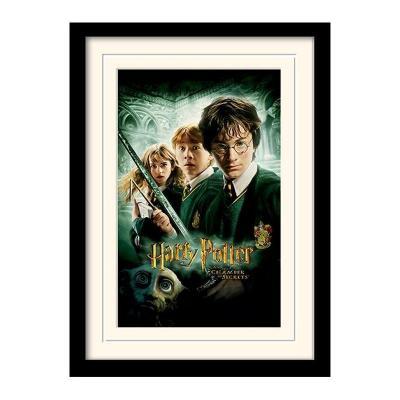 Harry potter mounted framed 30x40 print chamber of secrets
