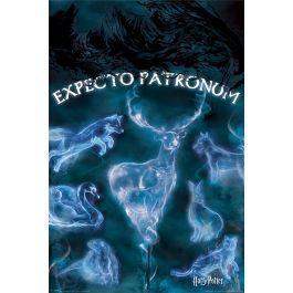 Harry potter patronus poster 61x91cm 1