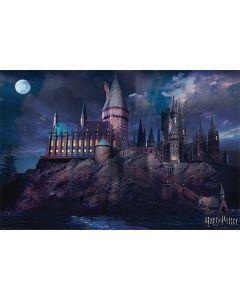 Harry potter poster 61x91 hogwarts