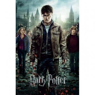 Harry potter poster 61x91 part 2 one sheet