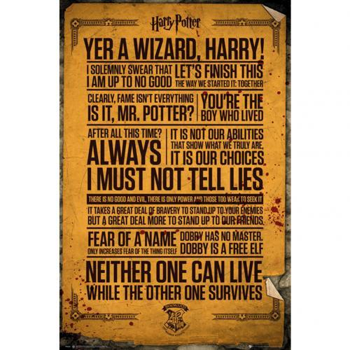 Harry potter poster 61x91 quotes