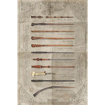 Harry potter poster 61x91 the wand chooses the wizard