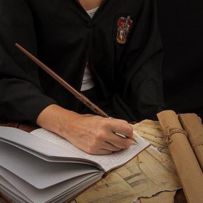 Harry potter stylo baguette d harry potter