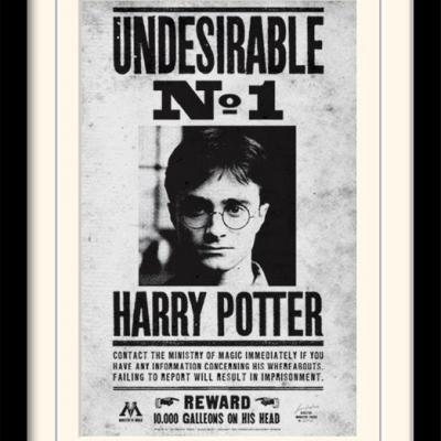 Harry potter undesirable no1 impression encadree 30x40