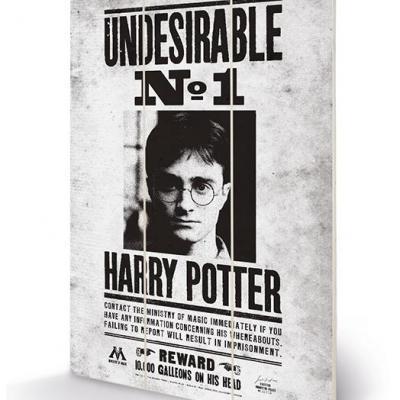 Harry potter undesirable no1 impression sur bois 20x29 5