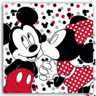 Mickey minnie coussin with secrete pocket disney