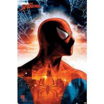 Spider man poster 61x91 protector of the city