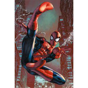Spider man web sling poster 61x91cm