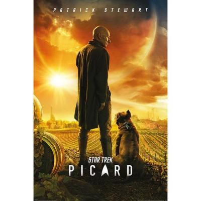 Star trek poster 61x91 picard number one