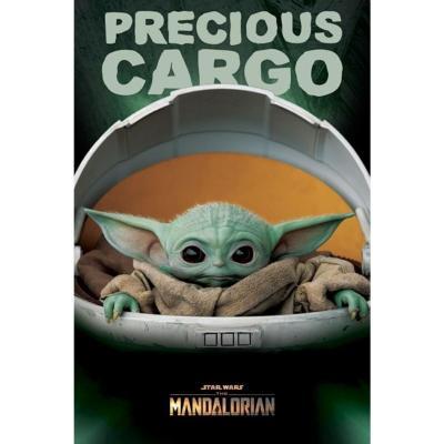 Star wars the mandalorian poster 61x91 precious cargo