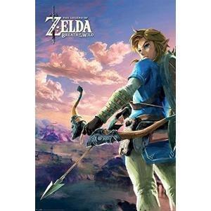 Zelda poster 61x91 breath of the wild hyrule scene landscape